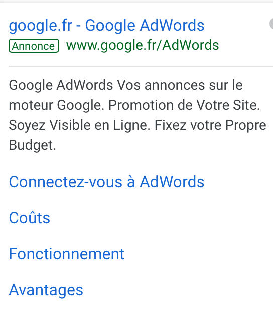 annonce adwords - Pourquoi utiliser Google Analytics, Adwords, Trends..